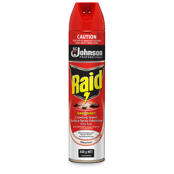 Raid® One Shot Crawling Insect Killer Odourless 450G